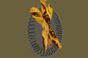 sacristains-amande-choco-rectte-gazette-180c