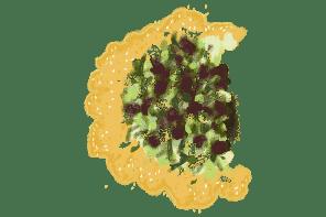 tarte-aux-oignons-nouveaux-et-brebis-frais-recette-gazette-180c
