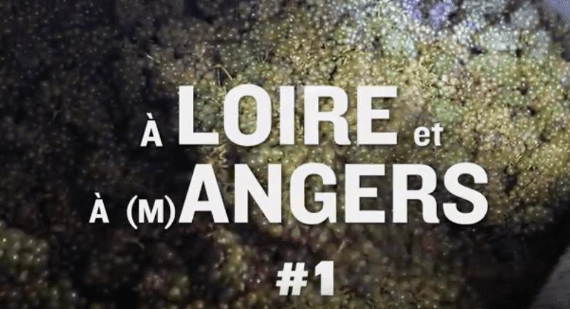 À Loire et à Angers #1 - Bioconversion 1