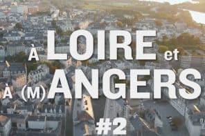 À Loire et à Angers #2 - Le Chenin