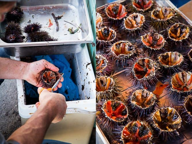 Pierre-Emmanuel Durand ouvre ses oursins pour les clients qui souhaitent déguster sur place.