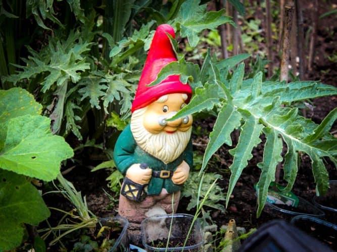 L'indispensable compagnon du jardinologue. © 180°C - Photographie Stephan Lagorce