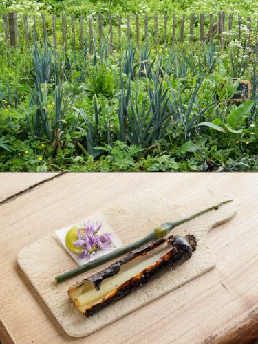 Des poireaux glanés chez Dries, Florent en extrait les fleurs, grille les blancs au barbecue et réalise une mayonnaise avec le vert - © 180°C  Photographie Camille Oger