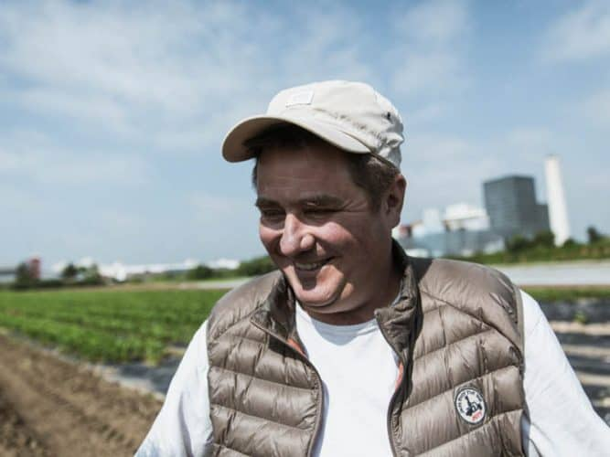Thierry Riant n'est pas un maraicher comme les autres, il se différencie par une qualité de légumes bien au-dessus de la moyenne - © 180°C - Éric Fénot