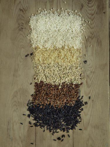 C'est à partir de riz complets que l'on obtient du riz blanc par simple polissage des grains. C'est aussi valable pour les riz rouges ou noirs - © 180°C - Photographie Éric Fénot