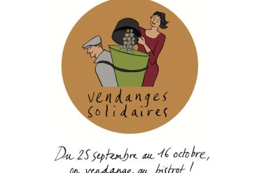 Les vendanges solidaires,<br>du 25 septembre au 16 octobre ! 5
