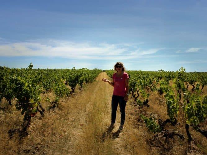 Jeune vigneronne et vieux chenins - 180°C - Photographie Stephan Lagorce