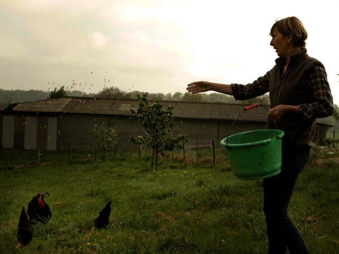 Sylvie Adrimant, ex-vétérinaire reconvertie dans l'élevage de poules gasconnes - © 180°C - Photographie Mayalen Zubillaga