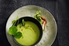Gaspacho vert, feuilles de basilic tempura