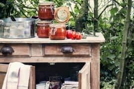 Coulis de tomates 3