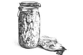 Le chou fermenté aux aromates 2