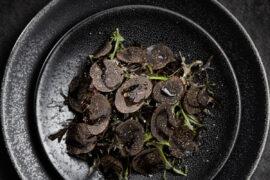 Le buisson de truffes 3