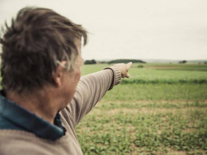 Emmanuel Delacour, céréalier, arpente son unique hectare de moutarde, coincé entre un champ de lentilles et des pois oléagineux - © 180°C Eric Fénot