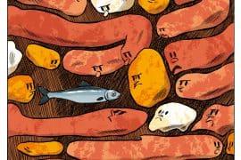 Le potjevleesch sans sardines à l'huile 4