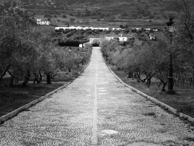 L'entrée du domaine de Joaquin qui se situe non loin d'Acinipo, l'antique cité du vin fondée par les Romains - © 180°C - Photographie Stephan Lagorce