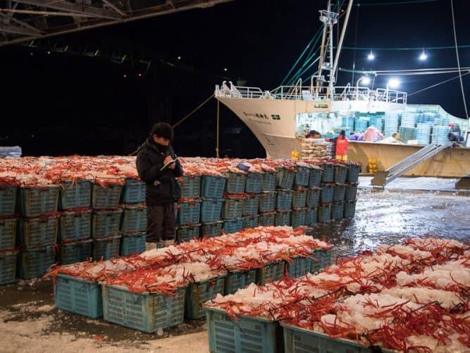 Les beni-zuwaigani ont été déchargés, il n'y a plus qu'à charger des maquereaux pour repartir à la pêche - © 180°C Photographie Camille Oger