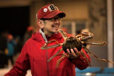 Une vie dans les crabes des neiges