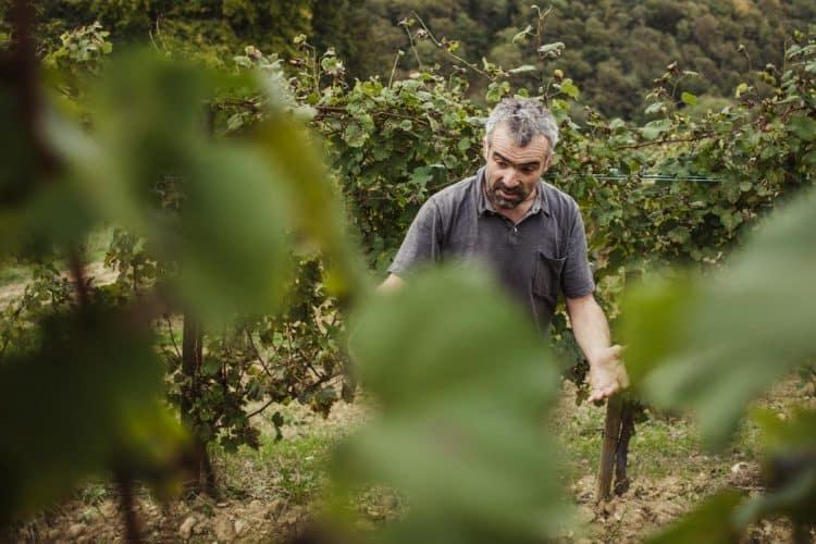 La montagne, l'amitié, la vigne, le Béarn, le rugby... en plus d'être vigneron, Jean-Marc Grussaute est pyrénéiste jusqu'au bon de ses tripes - © 180°C - Photographie Eric Fénot