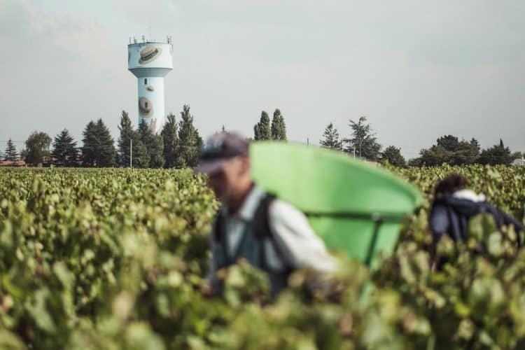 Pour repérer le domaine Landron, visez ce drôle de château d'eau peint de canotiers jetés dans un ciel bleu. - © 180°C Photographie Eric Fénot