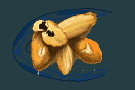 Crème renversée et coulis de muscat 3