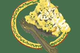 Effiloché de morue et purée de pomme de terre 7