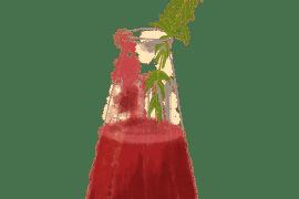 Soupe de fraises à la verveine 2