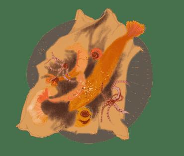 Petite friture de la mer 10