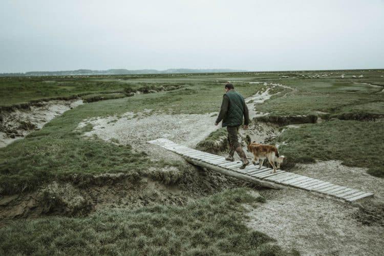 Depuis 33 ans, qu'il pleuve, qu'il neige, qu'il grêle ou que la chaleur soit accablante, Roland surveille son troupeau tous les jours de 8h30, heure à laquelle il libère les bêtes des parcs où elles ont passées la nuit, jusqu'à 18h30 - © 180°C - Photographie Éric Fénot