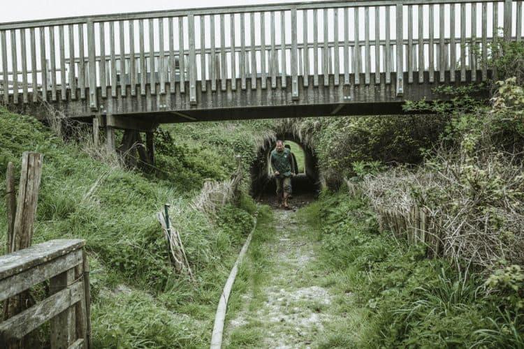 Des tunnels ont été construits sous la route pour permettre aux bergers de faire passer les bêtes. - © 180°C - Photographie Éric Fénot