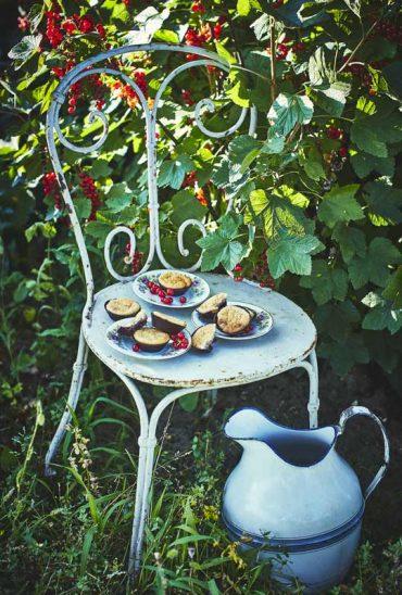 Petits biscuits aux groseilles 2