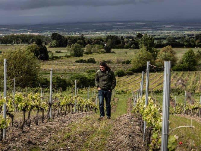 Aujourd'hui, le domaine de Frédéric, baptisé Mas de mon Père s'étend sur 6 hectares, taille plutôt modeste dans ce vignoble qui ne manque pas de singularités - © Viamo - Photographie Antonin Bonnet