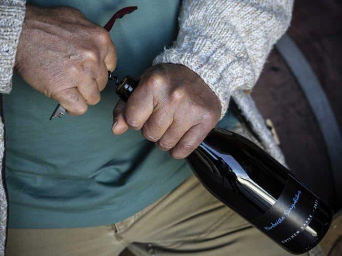 «Je mets des vins très puissants en amphore. Après quelques mois, ça leur apporte une patine et une tension que la barrique, à l'influence plus pommadée, ne donne pas» - © Viamo - Photographie Antonin Bonnet