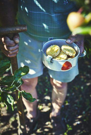 Infusion glacée romarin et fleur d'oranger et sablés au romarin