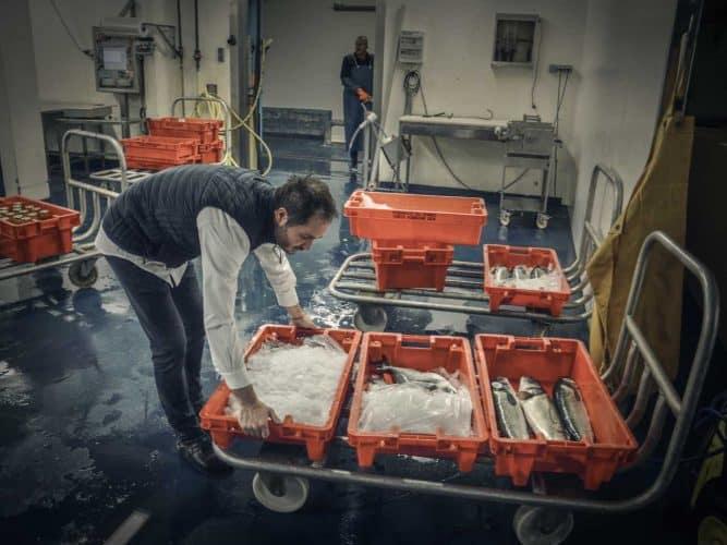 Alexandre Couillon choisit ses poissons lui-même chaque matin à la criée de Noirmoutier © 180°C - Photographie Manu Rodriguez