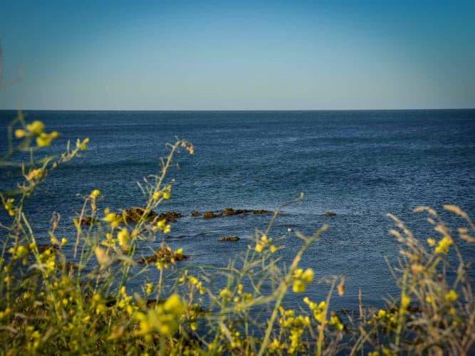 Où qu'on se trouve à Noirmoutier, vents et marées ne sont jamais bien loin. © 180°C - Photographie Manu Rodriguez