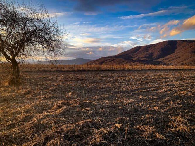 Paysage autour des vignes à Artana.  - © 180°C Photographie Pauline Dupin-Aymard