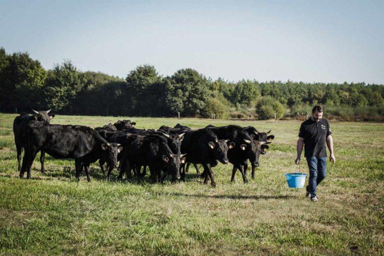 Chez les Rialland, on est agriculteur depuis 5 générations au Petit-Mars en Loire-Atlantique à deux pas de l'Erdre, un affluent de la Loire. - © 180°C - Photographie Éric Fénot