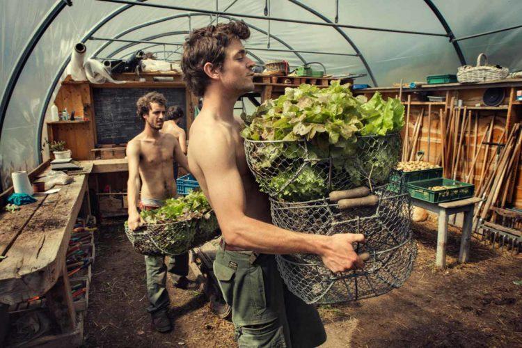 L'heure de la récolte. Prenez-soin de la terre, elle vous le rendra ! - © 180°C - Photographie Guillaume Czerw