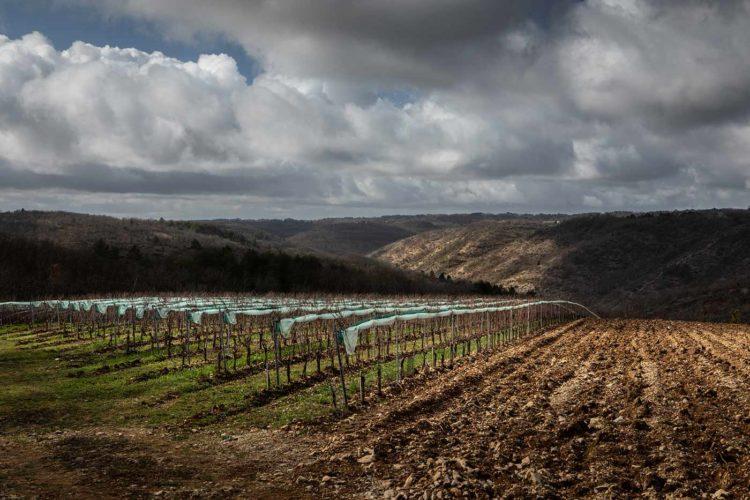 A Cournou, à 17 kilomètres à l'ouest de la capitale locale, l'exploitation s'étend sur 23 hectares - © Viamo - Photographie Antonin Bonnet