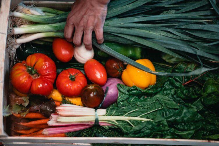 Des produits de saison, bio et bons... un vivier d'inspiration culinaire pour le chef - © Photographie Antidote factory