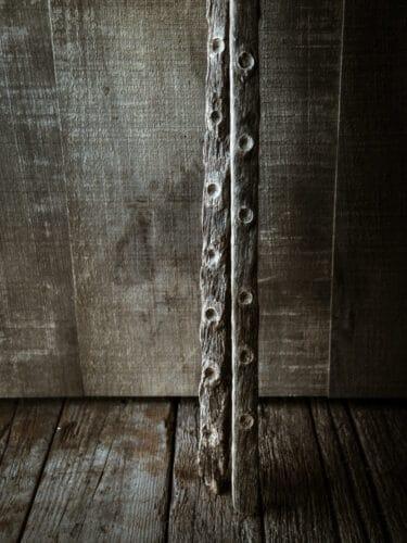 D'anciennes perches, vestiges du temps ou les huîtres étaient encore collées au ciment. - © 180° - Photographie Éric Fénot