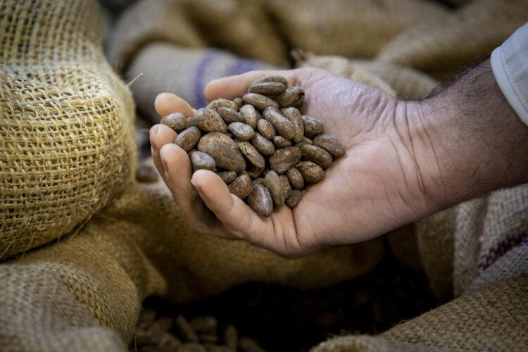Les fèves de cacao soigneusement sourcées sont importées du Brésil, de Jamaïque, du Vénézuela, de Colombie, du Pérou et d'Équateur entre autres - © 180°C - Photographie Olivier Pascuito