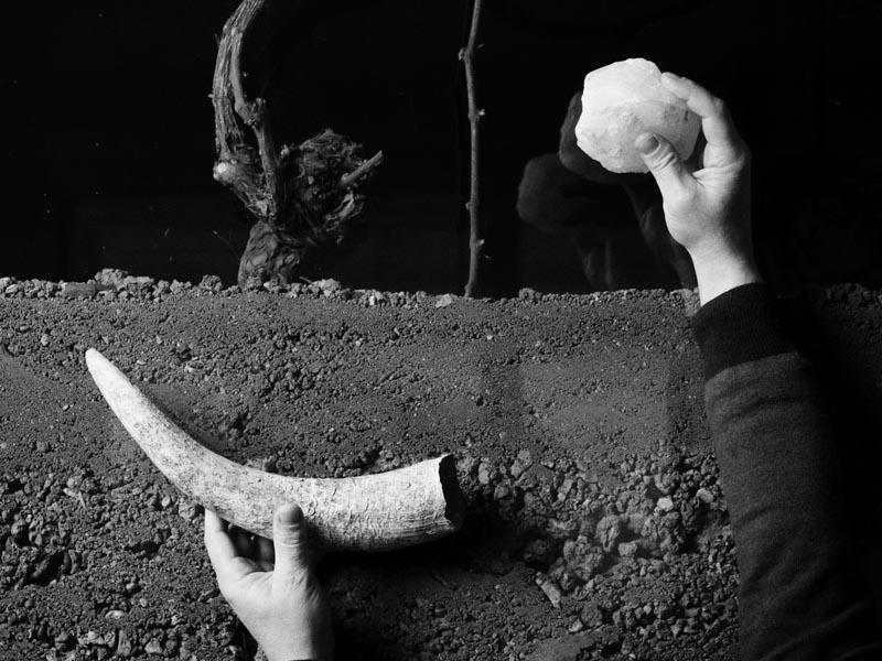 Veiller au grain : <br/>Les doux dingues de la biodynamie vous saluent bien