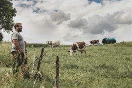 Sur la trace du Morbier : <br/>des Hommes, des vaches, du bon sens <br/>et du savoir-faire
